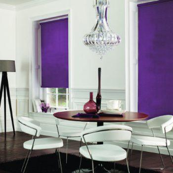 bright purple roller blinds