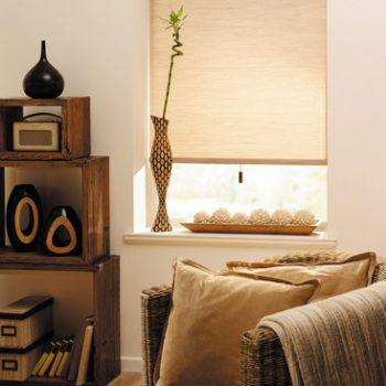 natural colour pleated blinds