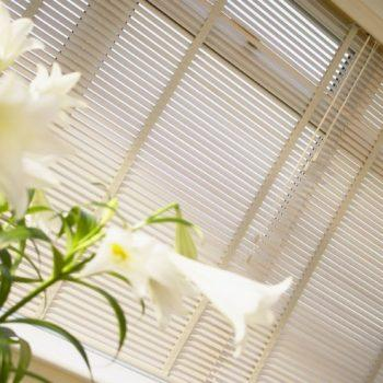 light birch venetian blinds