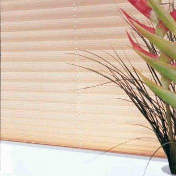 cream coloured pleated blinds