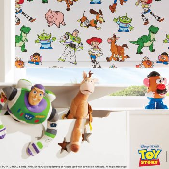 toy story printed blinds